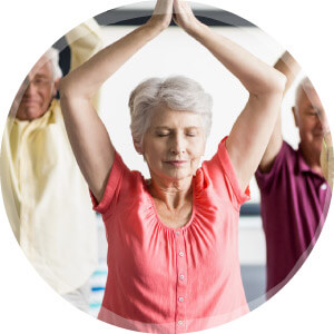 Cours de yoga sénior viniyoga à Carla-Bayle ariège